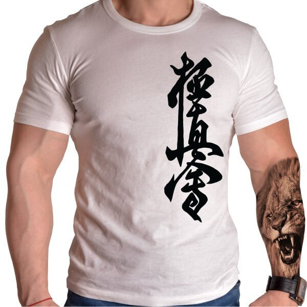 kyokushin-karate-teniska-luvski-bqla